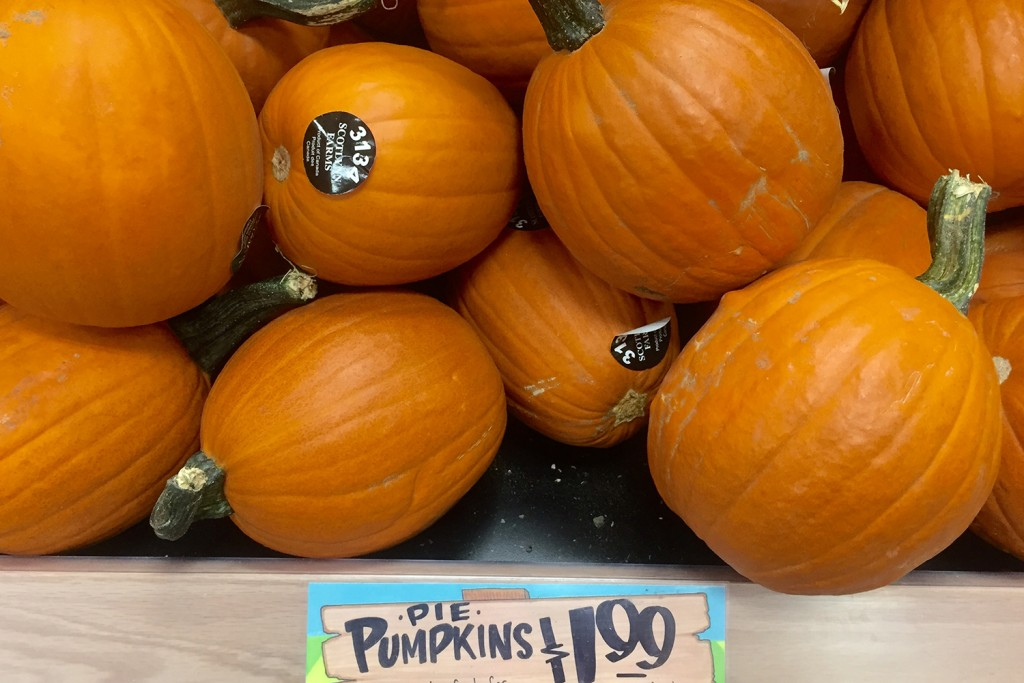 trader-joe-pie-pumpkin-4427