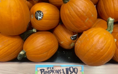 Pumpkin Scavenger Hunt in Trader Joe's