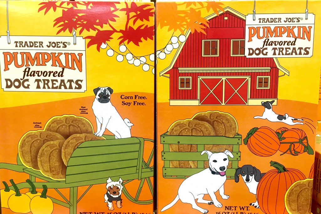 trader-joe-pumkin-flavored-dog-treats